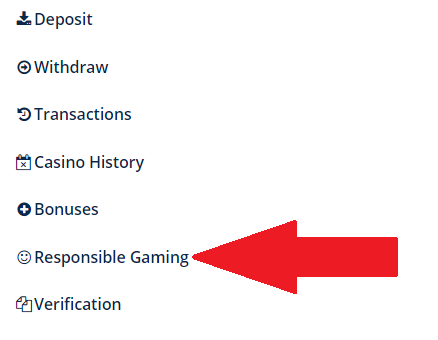 Turbo Casino account menu